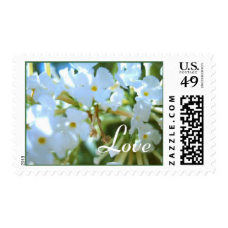 White Flowers Stamps