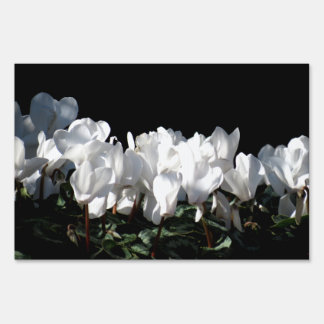 White Flowers Sign