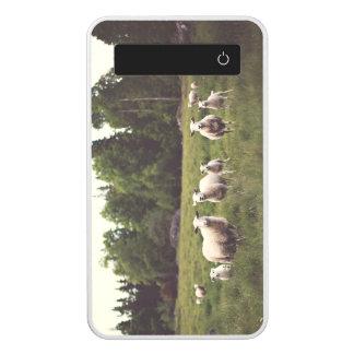White Fluffy Flock Sheep Lambs Field Trees Rocks Power Bank