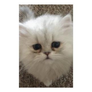 White Fluffy the kitty with sad eyes Stationery