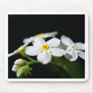White Forget-me-nots Mouse Pad