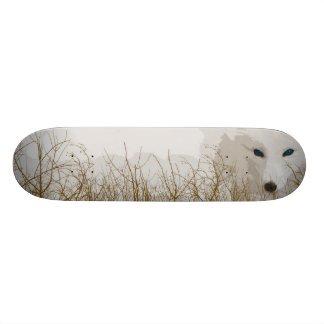 White Fox Skateboard Deck