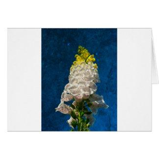 White Foxglove flowers on texture Card