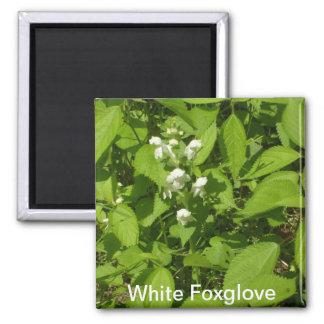 White Foxglove 2 Inch Square Magnet