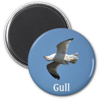 White Freshwater Gull Bird-lovers 2 Inch Round Magnet