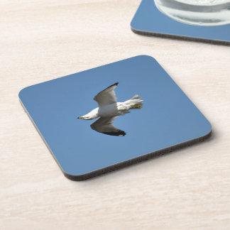 White Freshwater Gull Bird-lovers Beverage Coaster