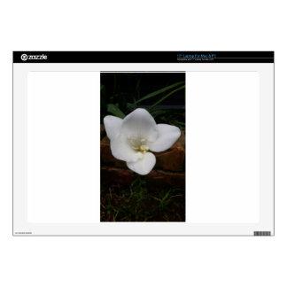 """White Fresia Flower Skins For 17"""" Laptops"""