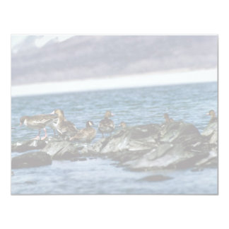 White-fronted Geese and Canada Geese 4.25x5.5 Paper Invitation Card