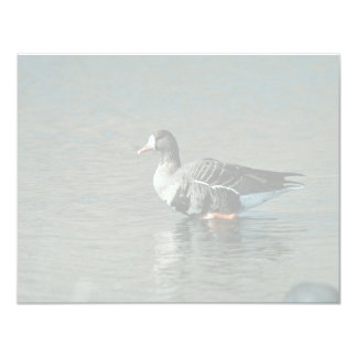 White-fronted Goose Personalized Invite