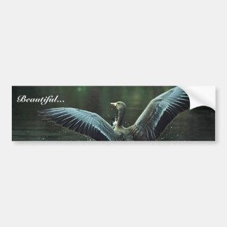 White-fronted Goose Landing on Water Bumper Sticker