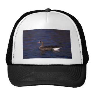 White-fronted Goose Trucker Hat