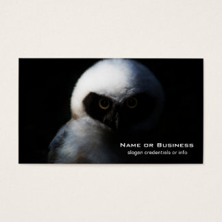 White Fuzzy Owl with Piercing Gaze Business Card
