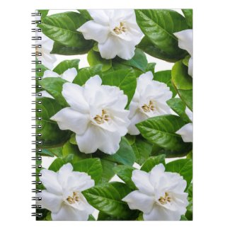 White gardenia flowers and green leaves notebook