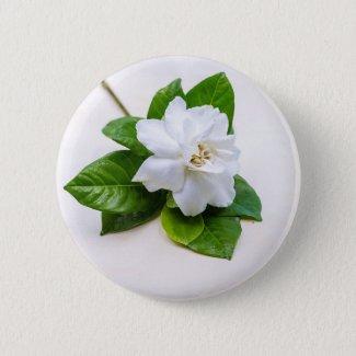 White Gardenia Flowers Button