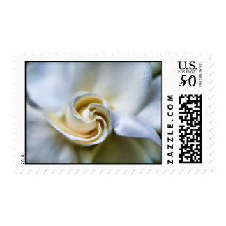 White Gardenia Illustration Postage