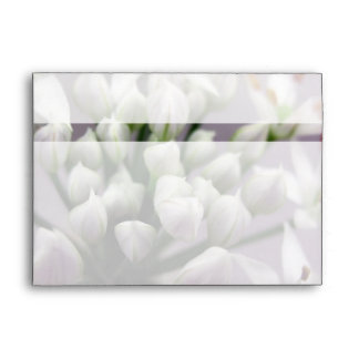 White Garlic Chive Blossoms on Purple Envelope