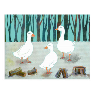 White Geese Postcard