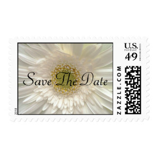 White Gerbera Daisy Wedding Save The Date Stamps