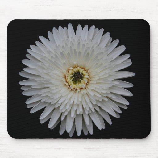 White Gerbera Flower Mousepad