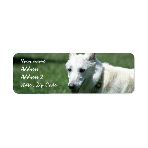 White German Shepherd Address Labels