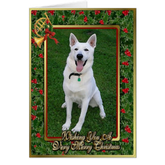 White German Shepherd Dog Blank Christmas Card