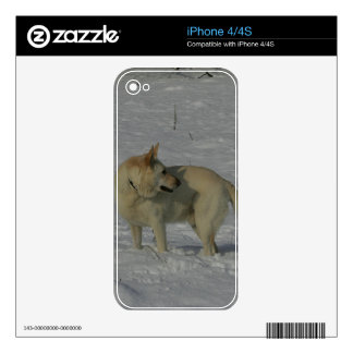 White German Shepherd  in the Snow Decal For iPhone 4