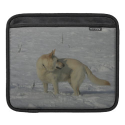 White German Shepherd  in the Snow Sleeve For iPads