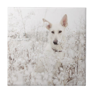 White German Shepherd in the Snow Small Square Tile