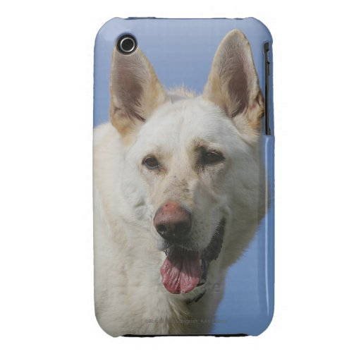 White German Shepherd iPhone 3 Case-Mate Cases