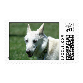 White German shepherd postage