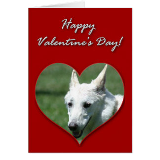 White German Shepherd Valentines Day Card