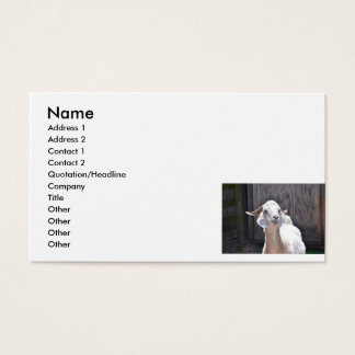 White goat business card
