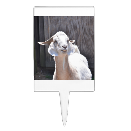 White goat cake toppers