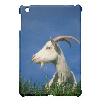 White goat grazing iPad mini case