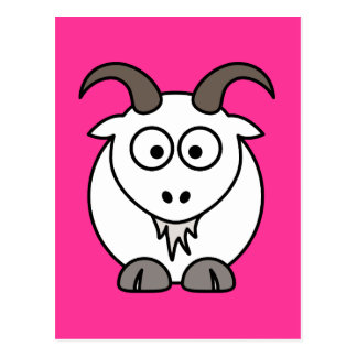 White Goat selection Post Card