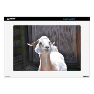 "White goat 15"" laptop decals"
