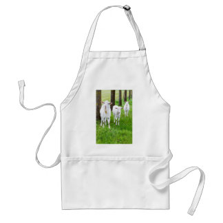 White goats on grass with tree trunks adult apron