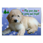 """""""White Golden Doodle Christmas"""" Greeting Cards"""