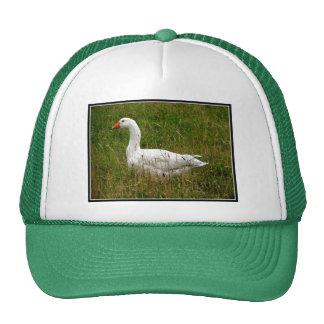 White Goose Trucker Hats