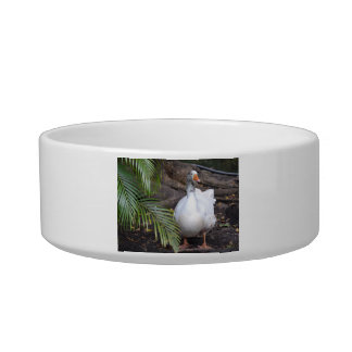 White Goose standing near fronds Cat Bowls