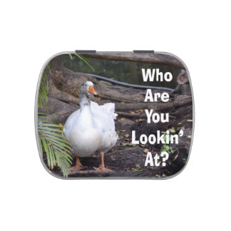 White Goose Who You Lookin At text Jelly Belly Candy Tin
