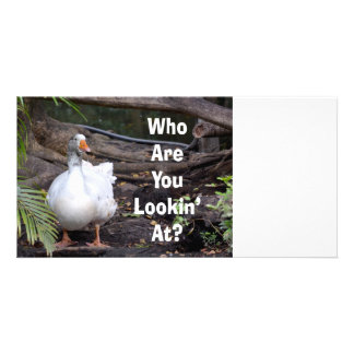 White Goose Who You Lookin At text Photo Card