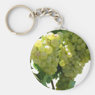 White grapes in a vineyard on white background keychain