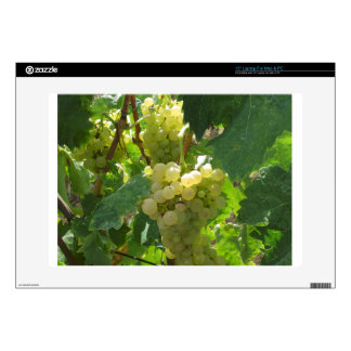 "White grapes in a vineyard skins for 15"" laptops"