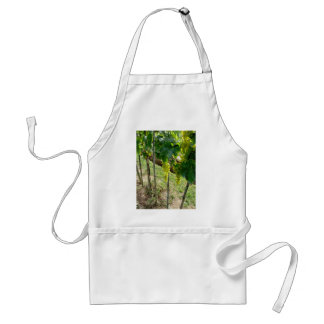 White Grapes on the Vine Adult Apron