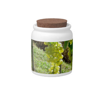 White Grapes on the Vine Candy Jars