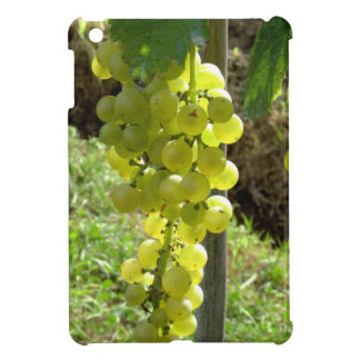 White Grapes on the Vine Case For The iPad Mini