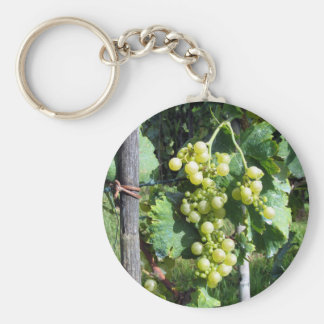 White Grapes on the Vine Keychain