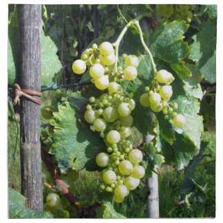 White Grapes on the Vine Napkin