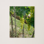 White Grapes on the Vine Puzzle